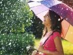 Стильная осень – выбираем зонт.